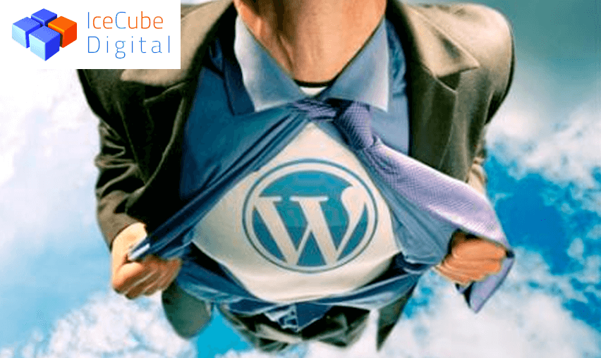 Why We Love WordPress?