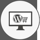 Wordpress Developers