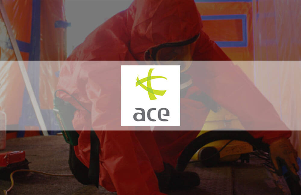 ACE Consultants