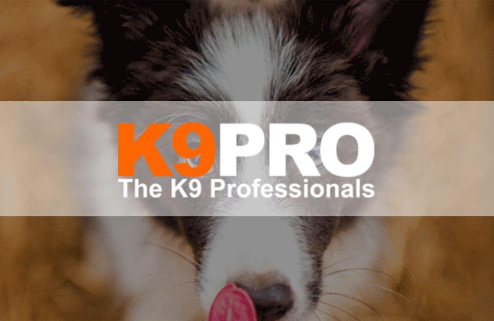 K9pro